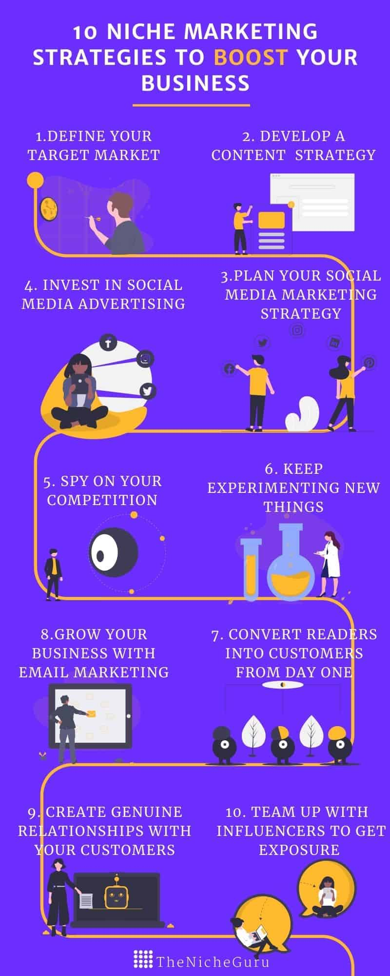 niche marketing strategies infographic