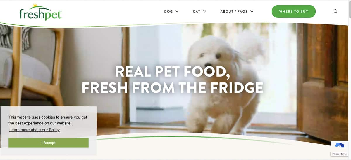 fresh pet blog