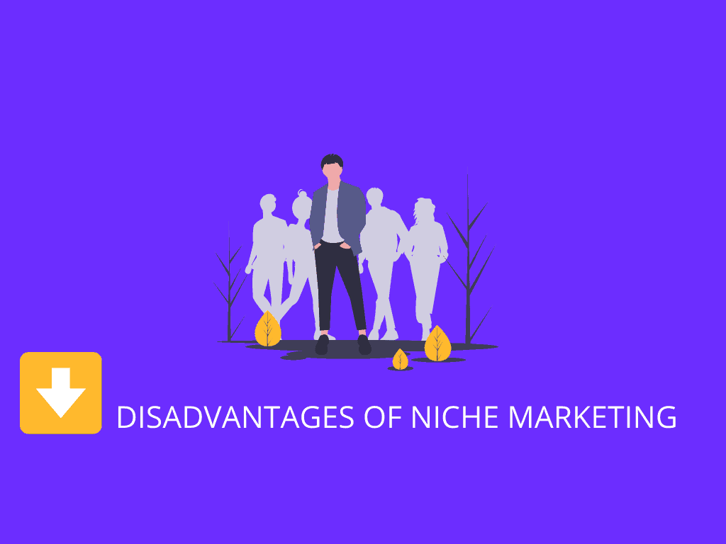 disadvantages of niche marketing
